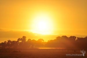 180813 sunrise